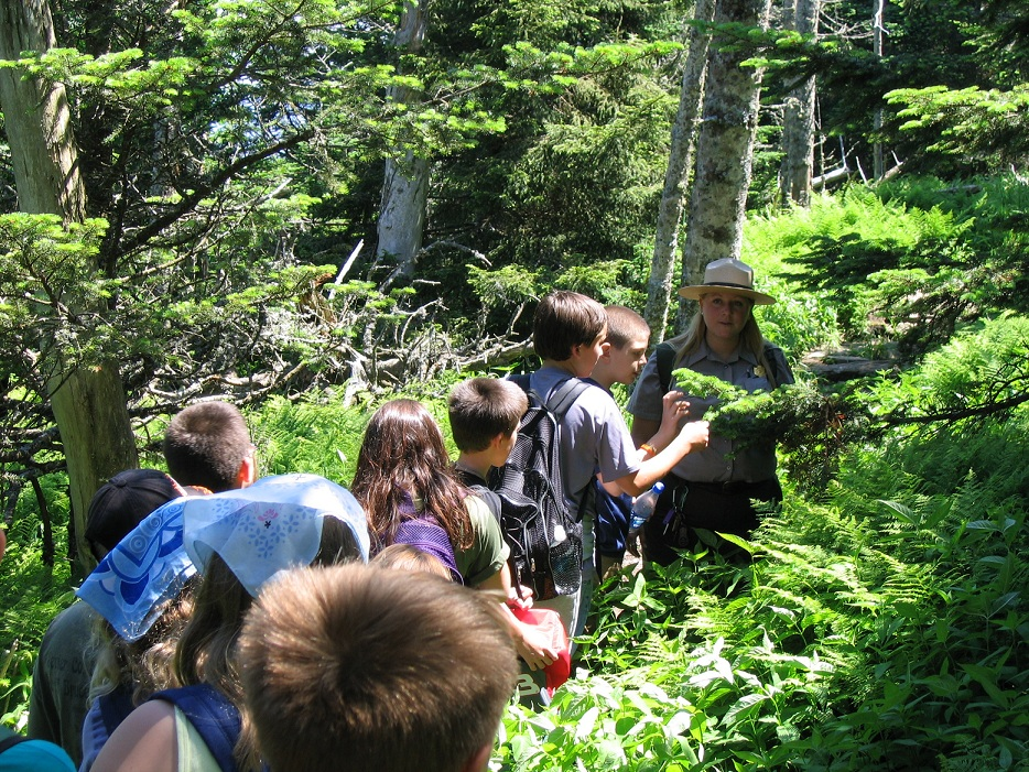 """Ranger Emily Guss leads a group of """"Special Scientists"""" in Great Smoky Mountains National Park. (NPS photo)"""