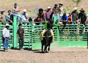 Crowe is shown riding her first junior bull at the Pi-Ume-Sha Rodeo in Warm Springs, OR.