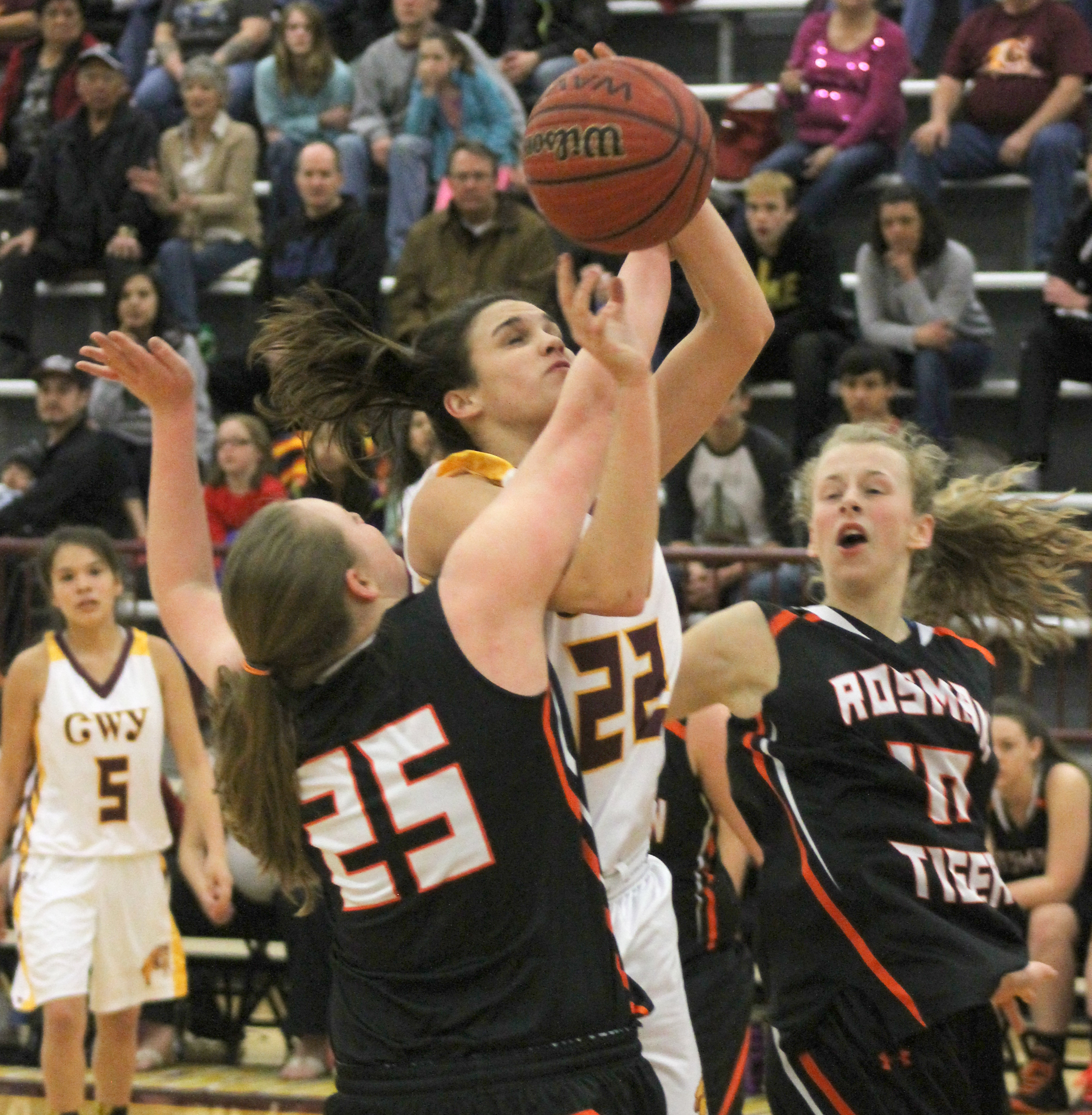 Avery Mintz (#22) takes a hard foul from Rosman's Rachel Owen (#25).  Mintz had 11pts and 5 steals for the game.