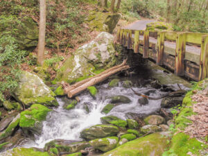 One of the Eight Roaring Fork Bridges side view
