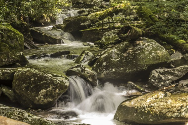 The Middle Prong stream along the Ramsey Cascades Trail in Great Smoky Mountains National Park. (Photo by NPS/Everitt)