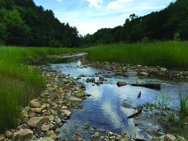 Great Smoky Mountains National Park officials announced on Wednesday, June 3 the completion of an enhancement and restoration project of a 4,613-foot section of Chilogatee Branch and four of its tributaries totaling 744 feet within the park. (NPS photos)