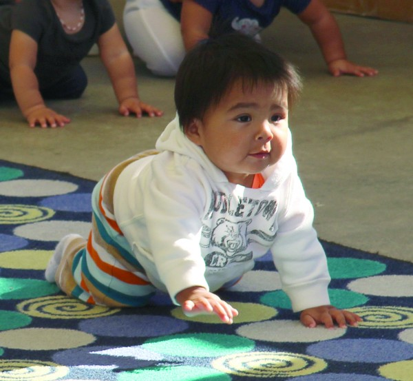 Andre Welch shows good form on his way to a first-place finish in the 9-11 month division of the annual Baby Crawling Contest at the Cherokee Indian Fair on Wednesday, Oct. 7.  (SCOTT MCKIE B.P./One Feather)