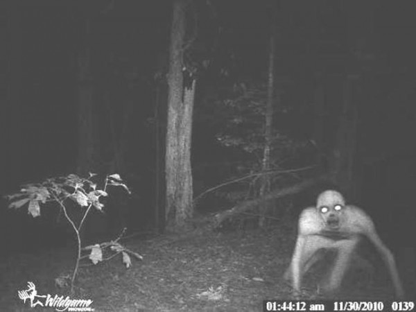 This image has been passed around social media for some time and attributed to many different occurrences. A local person gave it to the One Feather, stating that it was her understanding that it was taken on Mount Noble, possibly from a game camera. The origin and authenticity of the photo are unconfirmed.