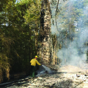A NPS fire crewman works to save the chimney.