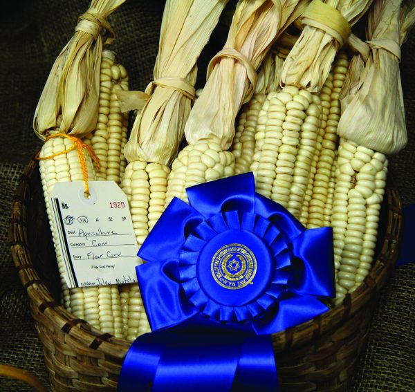 A display of flour corn won a blue ribbon in the Young Adult Agriculture Division for Jalen Motola at last year's Cherokee Indian Fair. (SCOTT MCKIE B.P./One Feather)