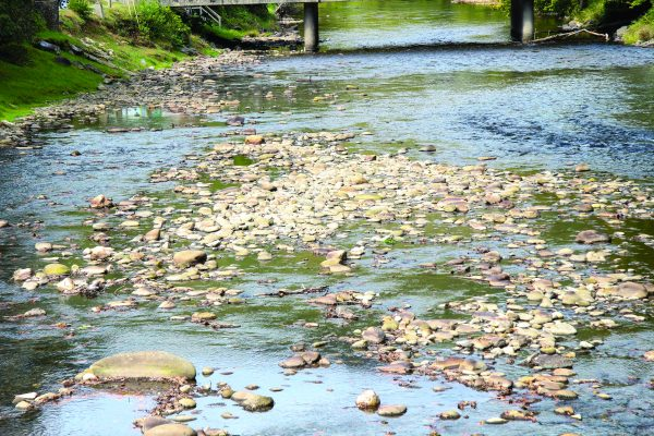 In this photo, taken Thursday, Oct. 6 at Saunooke Village, the Oconaluftee River shows the effects of the severe drought the Cherokee Indian Reservation is currently experiencing. (SCOTT MCKIE B.P./One Feather)